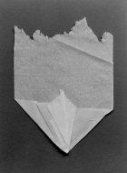 Anonymous Origami
