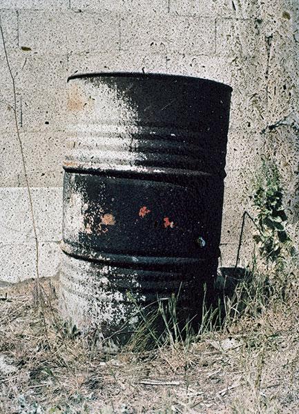 SGI-11-03-131-49-plant